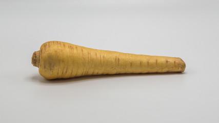 one ripe tuberous parsnip isolated on white