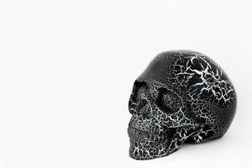 Black human skull on white. Day of Dead (dia de los muertos)