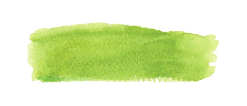 Light green watercolor label. Vector illustration.