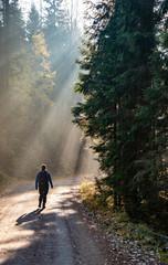 Fototapeten Fontane Woman hiking on country road