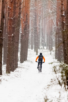 Winter riding a mountain bike in the forest