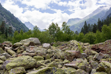 North Caucasus and its nature