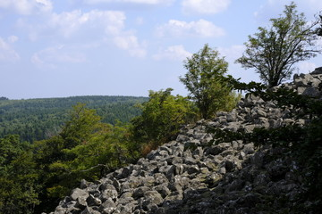 Blockschutthalden und Naturwaldreservat am Schafstein, Biosphärenreservat Rhön, Hessen, Deutschland