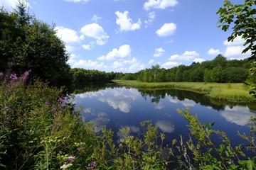 """Das Naturschutzgebiet """"Rotes Moor"""" im Biosphärenreservat Rhön, Hessen, Deutschland"""