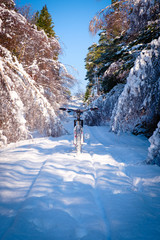 Mountain bike in snow