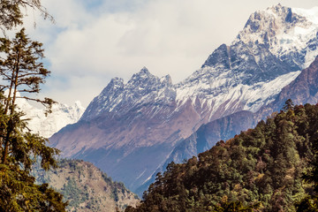 View on Manaslu from Annapurna Circuit Trek, Himalayas, Nepal.Snowy peak of the mountain in the back. Some branches of the tree on the left. Gorge separating mountains in three parts