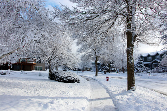 Beautiful winter morning after snowfall background. Snowy landscape with covered by fresh snow street and trees, cleaned walkway in a foreground. Small city life background.