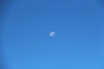 View of the old moon in the daytime sky