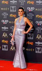 Annual Spanish Film Academy's Goya Awards ceremony in Seville