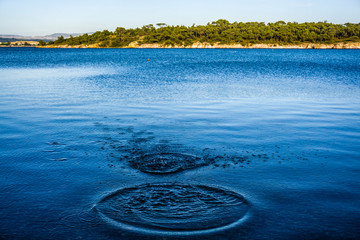 Ripples on sea texture pattern background. Round droplets of water over circles on pool water. Fresh water drop, whirl and splash. Laptop decorative wallpaper. Bright water rings affect the surface.