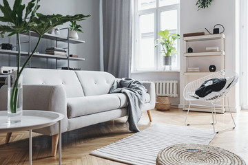 Scandinavian home interior of living room with design sofa with pillow, coffee table, plants, stylish accessories and bookstand on the grey wall. Brown wooden parquet.Concept of minimalistic interior.