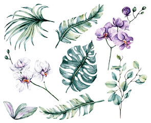 Watercolor flowers set, tropical flowers orchids and leaves for design wedding invitation, greeting, wallpaper, fashion, background, texture, wrapper, postcard, logo, etc. Hand painting.