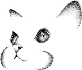 The logo cat for tattoo or T-shirt design or outwear. Cute print style cat background.