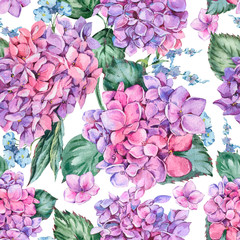 Summer Watercolor Vintage Floral Seamless Pattern with Blooming Hydrangea, Watercolor Botanical Natural Hydrangea Illustration on White Background