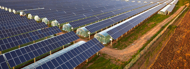 Solar photovoltaic panel installed on the roof of a constant temperature vegetable greenhouse