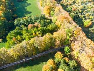 natural landscape scene. park in autumn with bushy trees with bright colorful autumnal foliage, top view