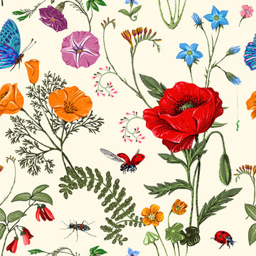Summer vector seamless pattern. Botanical wallpaper. Plants, insects, flowers in vintage style. Butterflies, beetles and plants in the style of Provence. Drawn nature wallpaper. Summer background
