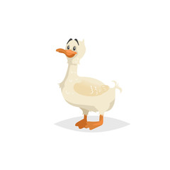 Cute white duck stay. Funny cartoon duckling character. Farm animal illustration for child education. Vector picture isolated on white background.