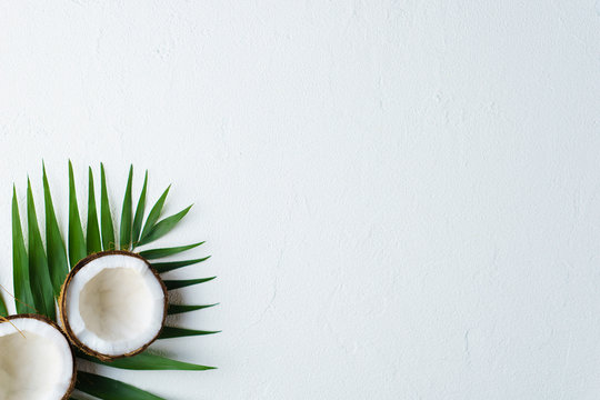 summer vacation, paradise, travel. ocean shore, tropical beach, sea coast. coconut palm leaves on white background. minimal summertime concept. creative layout, banner, poster template with copy space