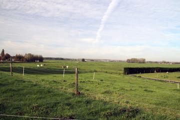 Small country roads in the Zuidplaspolder in Moordrecht in the Netherlands in the lowest area in western Europe