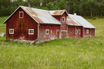Norwegen im Sommer Rundreise / Vogelinsel Runde