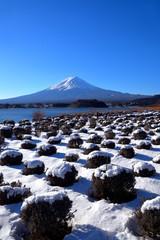河口湖大石公園からの雪景色の富士山 2019/02/02