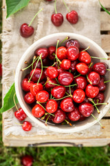 Tasty sweet cherries in a sunny day