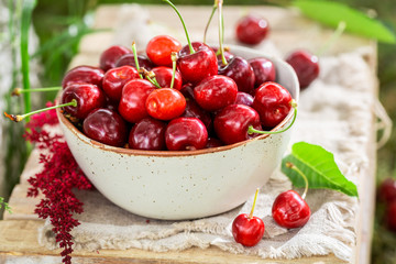 Red sweet cherries in the white bowl