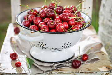 Full of vitamins sweet cherries in a summer garden
