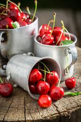 Fresh sweet cherries on old wooden stump