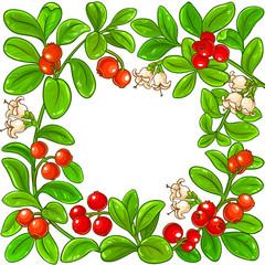 lingonberry vector frame