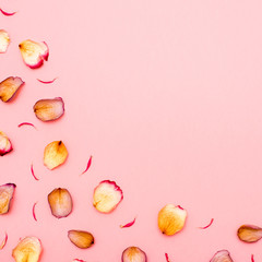 Rose petals on pink background. Flat lay. Copy space