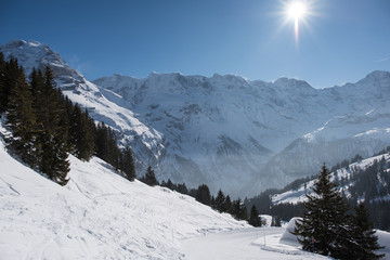 Winter landscape on a beautiful sunny day in the Swiss Alps, between Allmendhubel and Murren.