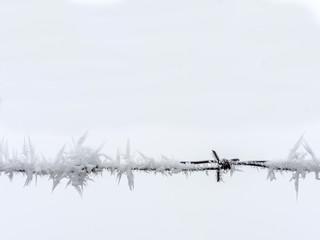 Stacheldraht im Winter