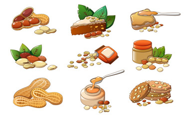 Peanut icons set. Cartoon set of peanut vector icons for web design