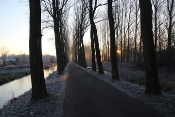 Hitlandselaan in Hitland during sunrise with frozen trees by night frost in Nieuwerkerk aan den IJssel in the Netherlands