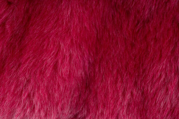 Aluminium Prints Macro photography Red faux fur textured background