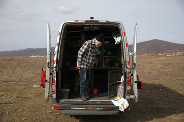 Former Dutch boxer Lubbers helps animal rescue team to place the stray dogs he and his partner were looking after in a van near Kosharitsa