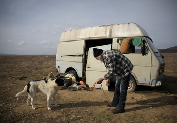 Former Dutch boxer Lubbers attempts to take one of the stray dogs he and his partner were looking after in Kosharitsa