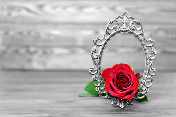 Mothers Day flower. Red rose in the vintage frame on wooden background