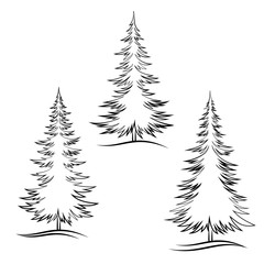 Set of Christmas Trees, Fir Tree Black Contour Winter Symbols, Isolated on White. Vector
