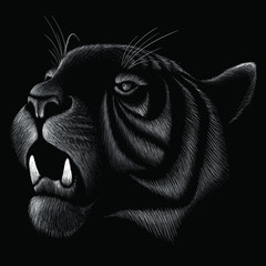 The Vector logo tiger cat for tattoo or T-shirt design or outwear.  Cute print style tiger background.