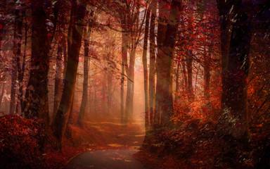 autumn road in dram colors