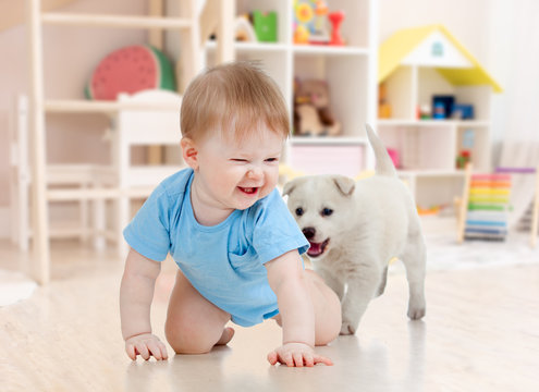 Little baby boy crawling and playing with adorable puppy at home
