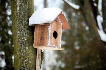 Feeder for birds in snow in winter forest