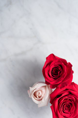 Top down view of pink and red roses on a marble surface.