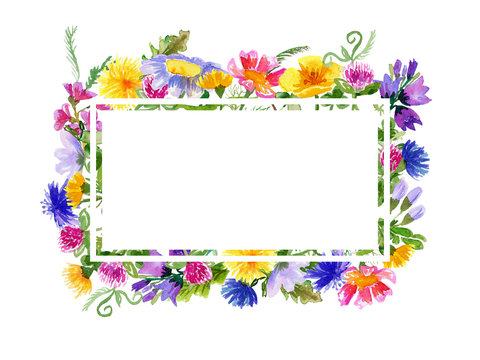 Frame with watercolor wild flowers on white