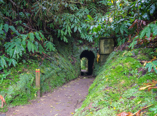 Entrance to the dark tunnel covered by moss and lush vegetation on footpath hiking trail Janela do inferno with red and yellow trail sign, Sao Miguel island, Azores, Portugal
