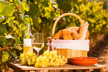 glass of white wine ripe grapes and picnic basket on table in vineyard
