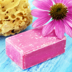 Echinacea Soap and Sponge
